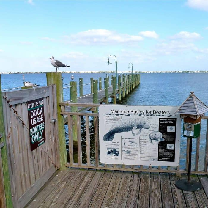 Watch for Manatees sign in Port Salerno Florida