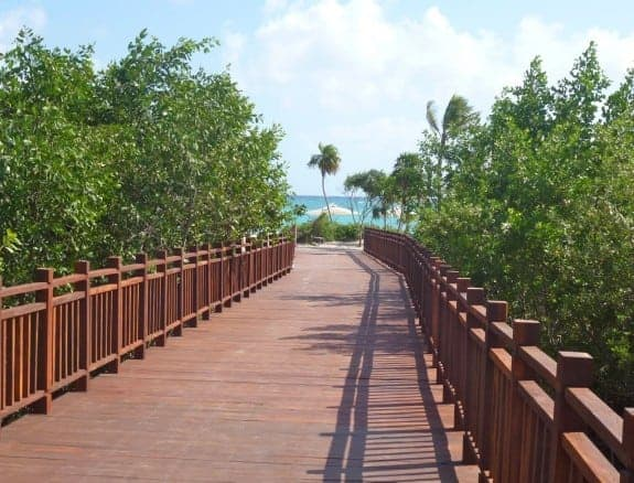 Path to beach at Paradisus Resort with mangroves #Cancun