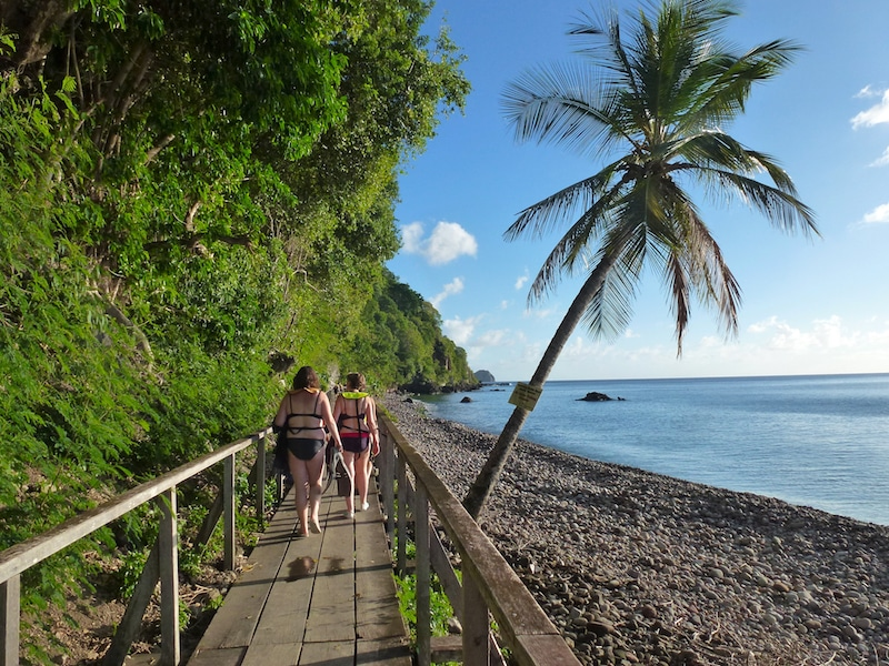 Walkway to Champagne Reef on Dominica