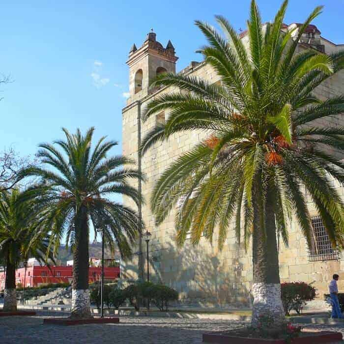 Street scene with church and palm trees in Oaxaca City Mexico.