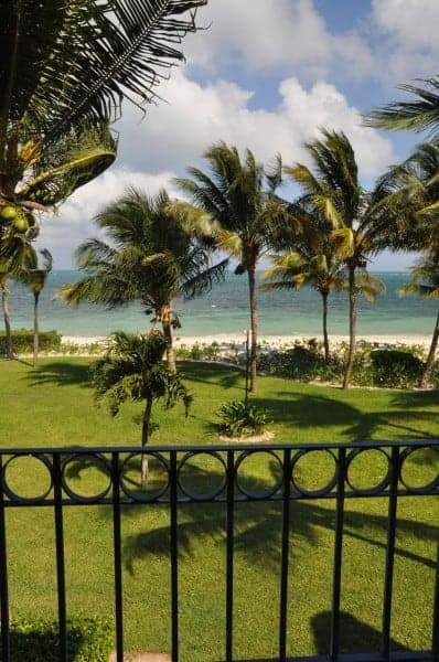 View of the bird-filled trees from a villa at Zoetry Resort in Puerto Morelos, Mexico.