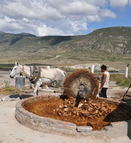 Mezcal production in Oaxaca
