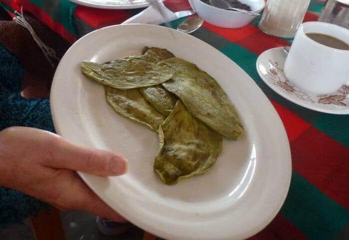 Nopal cactus for breakfast