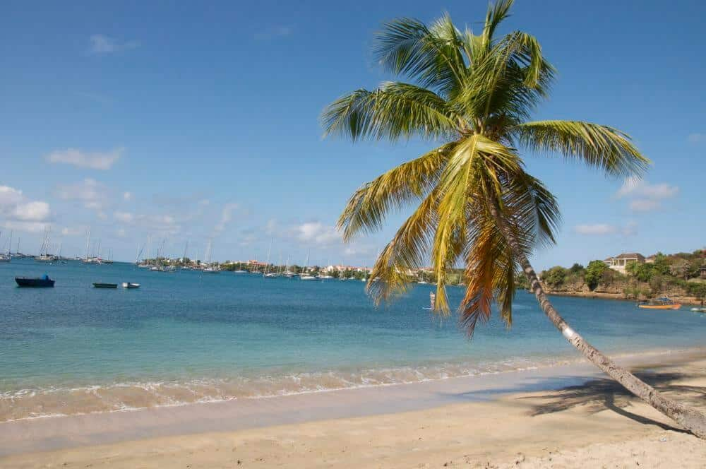Beautiful Prickly Bay Beach in Grenada