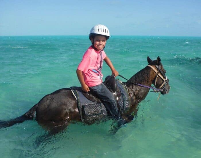 Provo Ponies in Providenciales