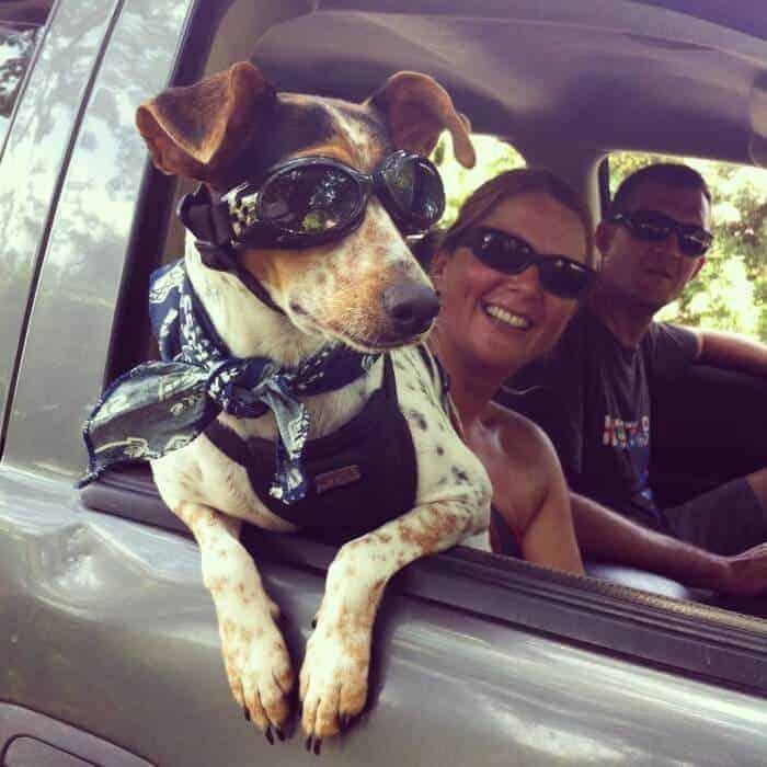 Primetime the terrier goes to Mazunte