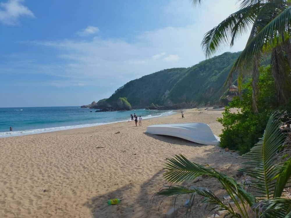 A beautiful beach with golden sand and palm trees at Playa Mazunte in Oaxaca, Mexico.