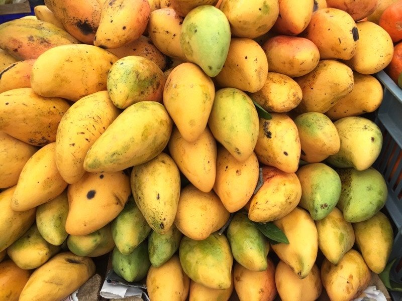 Mangos in Sunday street market in Playa del Carmen Mexico