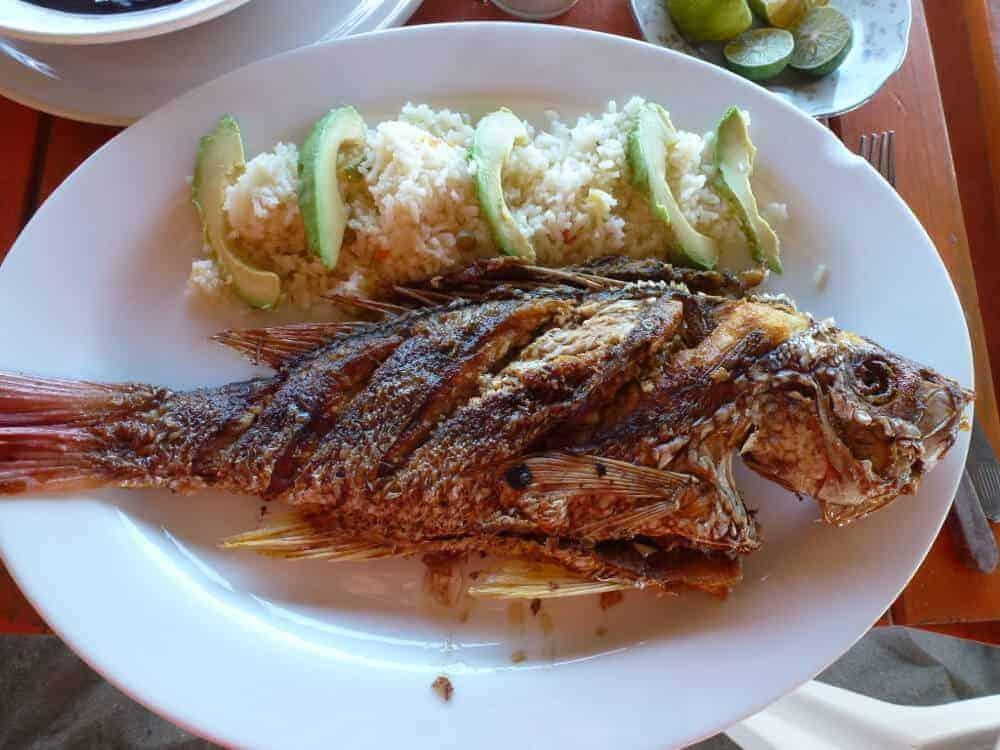 Fish a la plancha on a white plate at Roca Blanca beach near Puerto Escondido