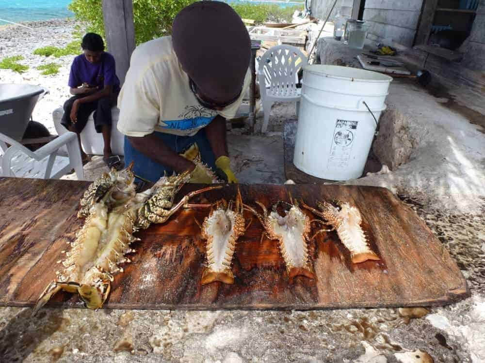Man preparing lunch of grilled lobster at Scilly Cay on Anguilla.