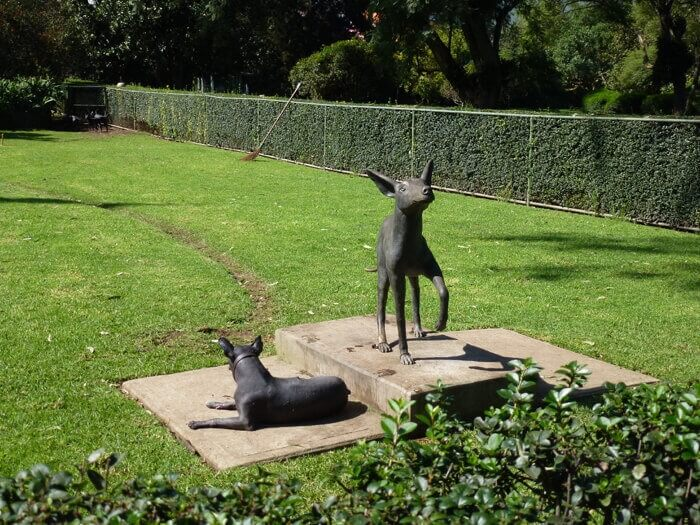 Statues of Xoloitzcuintle at Museo Dolores Olmedo Patino