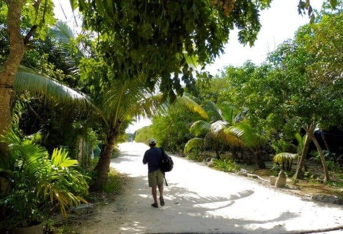 Dirt road to xpu-ha beach near playa del carmen
