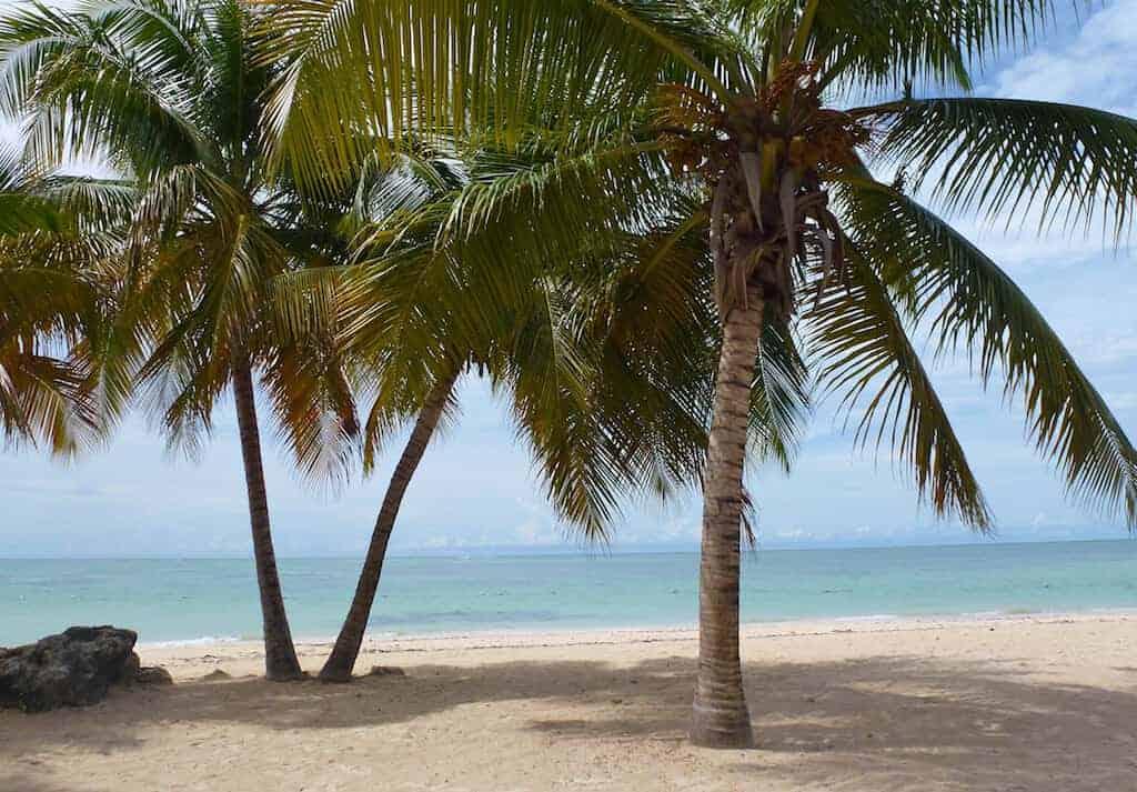 Pigeon beach in Tobago