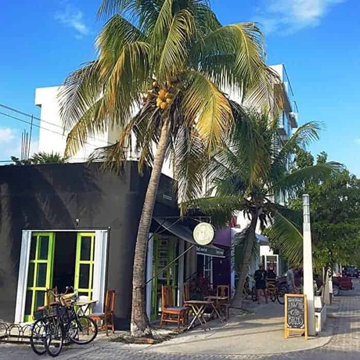 Marvins Vegan Burgers located on a quiet stretch of Quinta Avenida Playa del Carmen