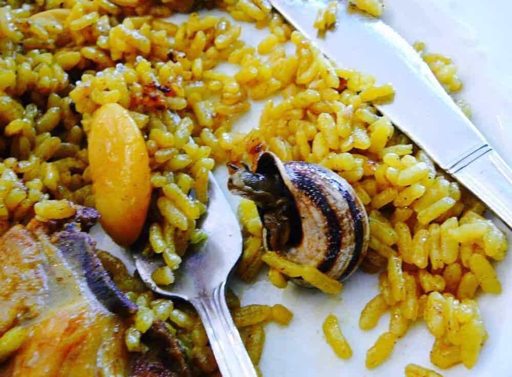 Don't be surprised to see a snail in your paella in Valencia