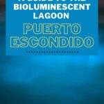 Blue plankton in the sea with text overlay of Bioluminescent Lagoon Tour in Puerto Escondido, Mexico for Pinterest.