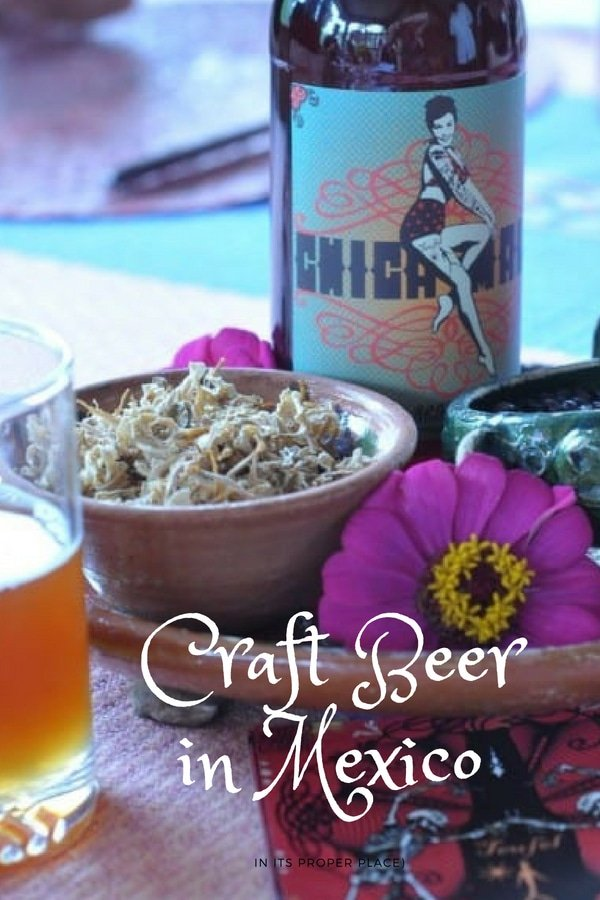 One of the most exciting new destinations for Mexican craft beer is the state of Oaxaca. Here's our guide on where to find the best craft beer from Oaxaca City to Puerto Escondido.