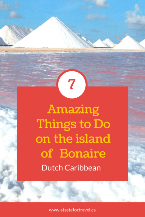 7 Amazing Things to do on Bonaire