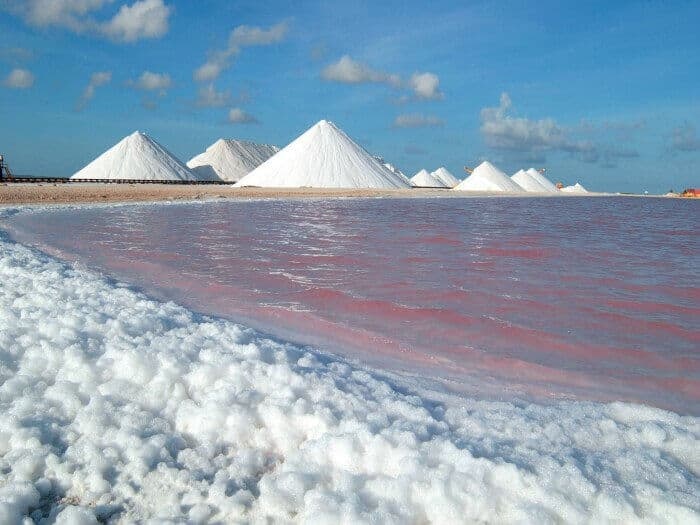 Salt Flats in Bonaire Credit Bonaire Tourism Corporation (BTC)