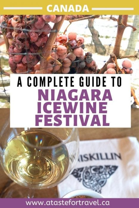 Things to Do at the Niagara Icewine Festival