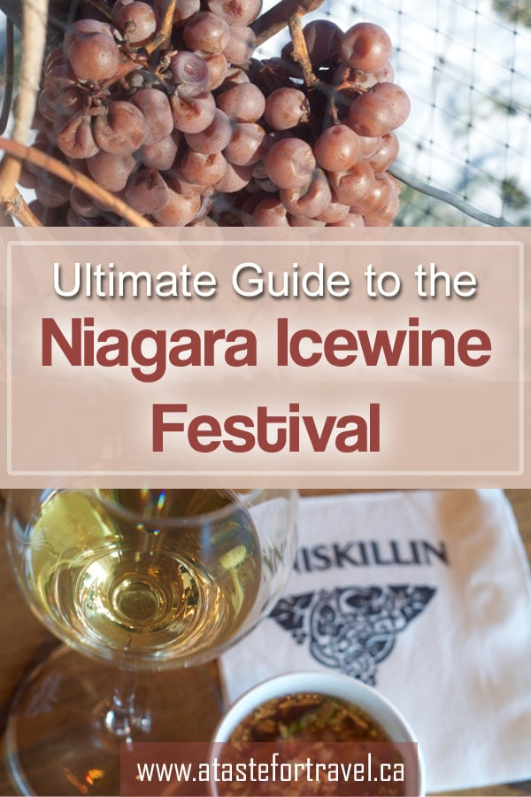 Celebrate winter with food and ice wine pairings, entertainment and ice sculptures at the Niagara Icewine Festival #wine #Canada