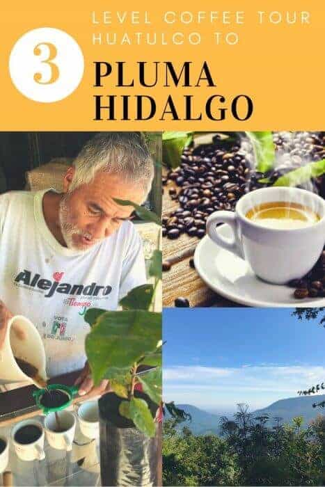Taste the world's best coffee on the 3 Level Tour from Huatulco to Pluma Hidalgo