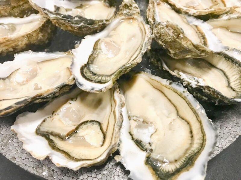 A platter of raw oysters on the half shell.