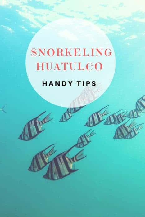 A visit to Huatulco Mexico isn't complete unless you go snorkeling in the clear, blue waters.