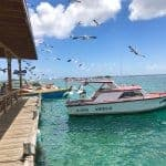 Zeerovers Aruba: A Seafood Restaurant You Don't Want to Miss