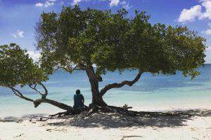 A secluded beach on Aruba