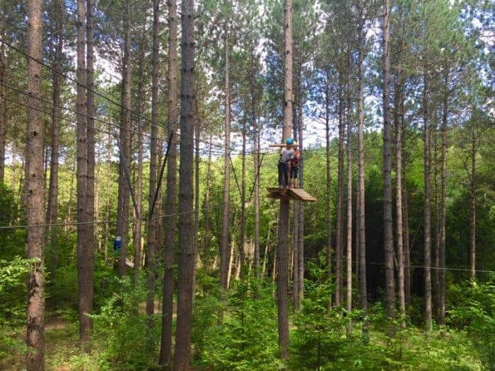 Treetop Trekking in the Ganaraska Forest Ontario