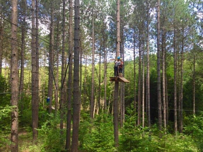 Treetop Trekking in the Ganaraska Forest Ontario