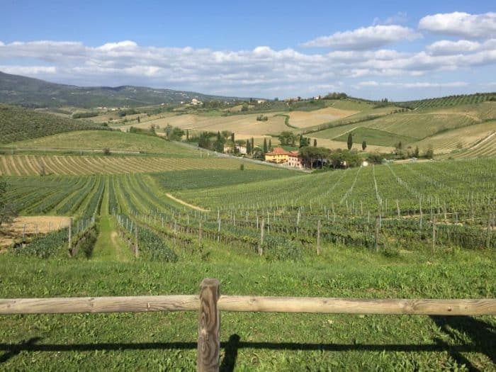 View from the Luxury Gold cooking class in Tuscany
