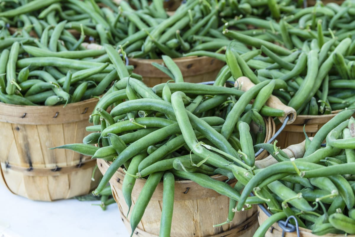 Fresh organic green beans in brown bushel baskets sitting on table at a farmers market.