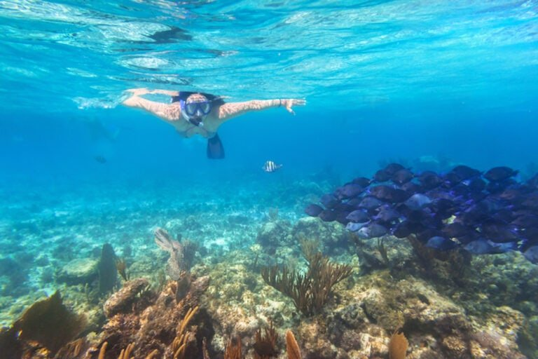 young woman snorkelling in the Caribbean.