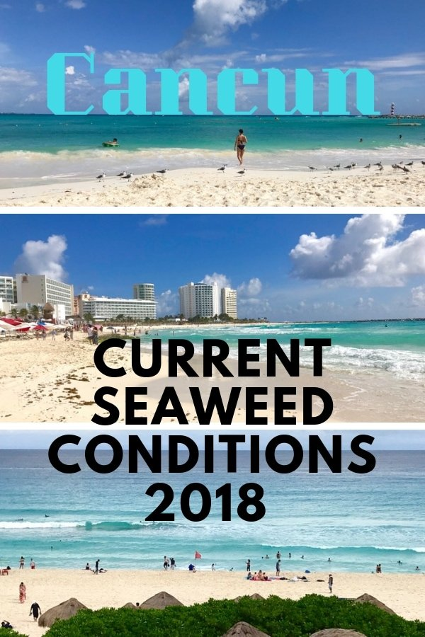 Planning a trip to Cancun-Riviera Maya in 2018 or 2019? Latest report on the current seaweed conditions in Cancun with reports on major beaches, best places to swim and advice on hotels with the best beaches