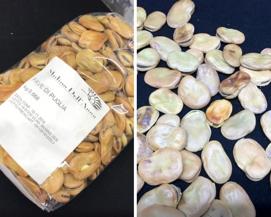 Fava beans from the market in Puglia Italy