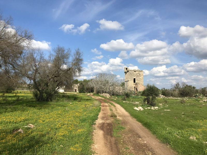 Masserias (walled farming estates) of historical and architectural interest dot the countryside of the Salento region of Puglia