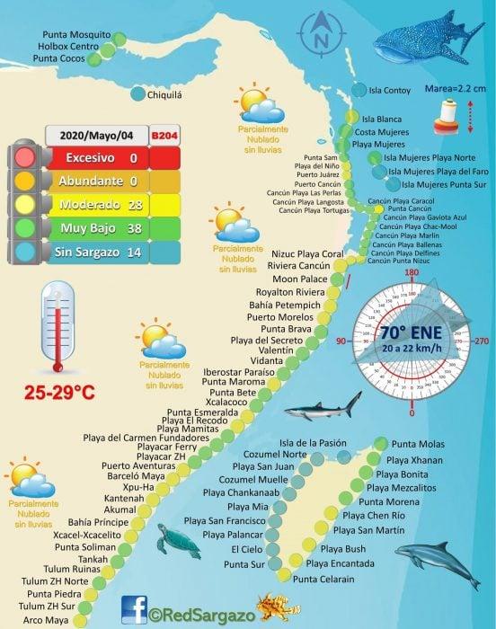 Cancun Seaweed Map May 2020 Credit Red de Monitoreo de Sargazo Cancun