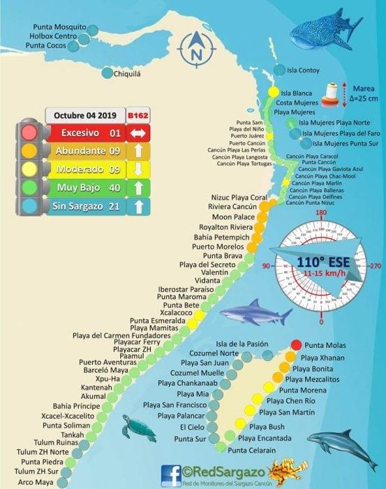 October Cancun Sargasso Seaweed Update Credit Red de Monitoreo del Sargazo