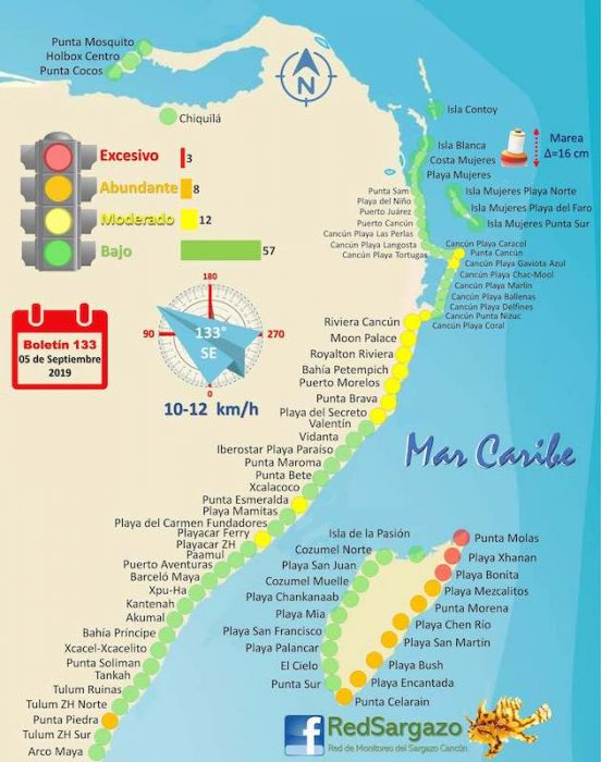 Seaweed Conditions in Cancun Map - September 2019 (Credit: Red de Monitoreo del Sargazo)
