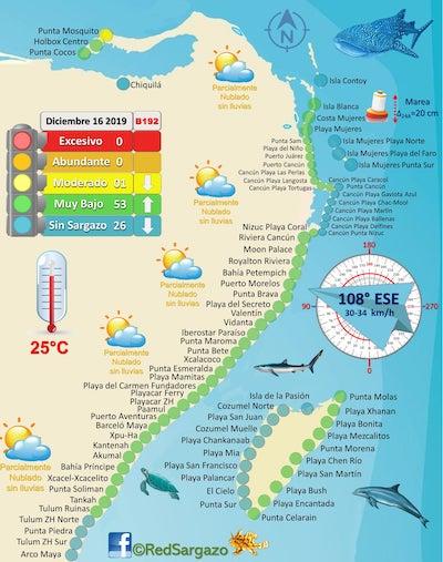 Map of sargasso seaweed Cancun and Riviera Maya December 2019 Credit RedSargazo