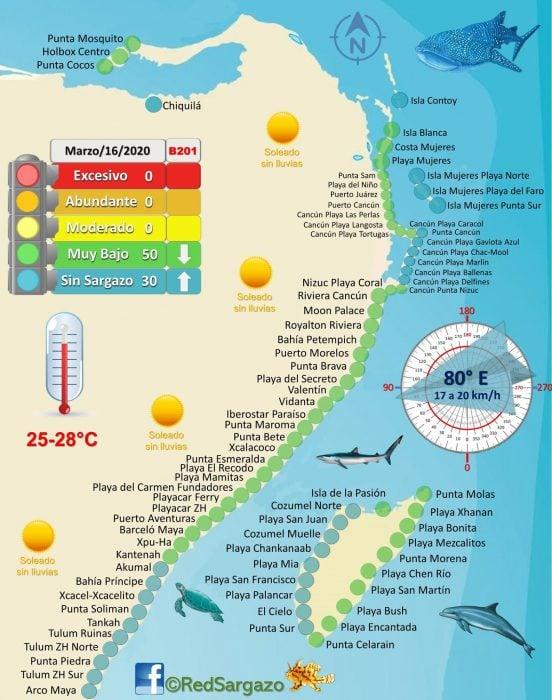 Sargassum Map Credit Red de Monitoreo de Sargazo Cancun