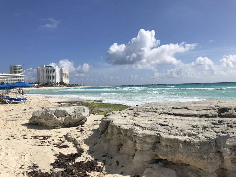 rocks and seaweed on the beach in Cancun Mexico