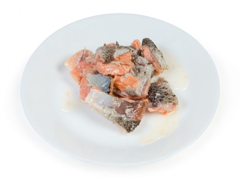 canned salmon on a plate dp
