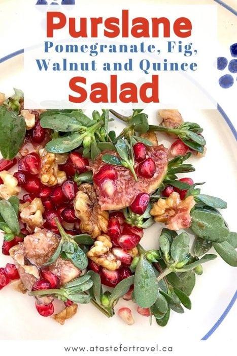 Italian Purslane Salad Pinterest