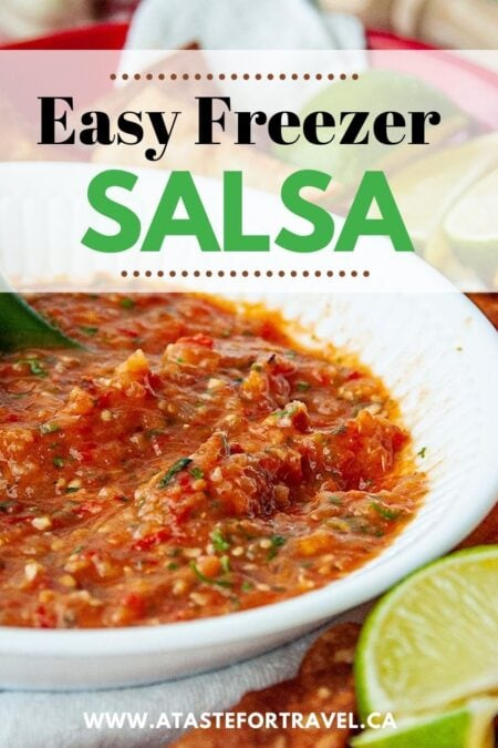 Close-up of freezer salsa with text overlay.