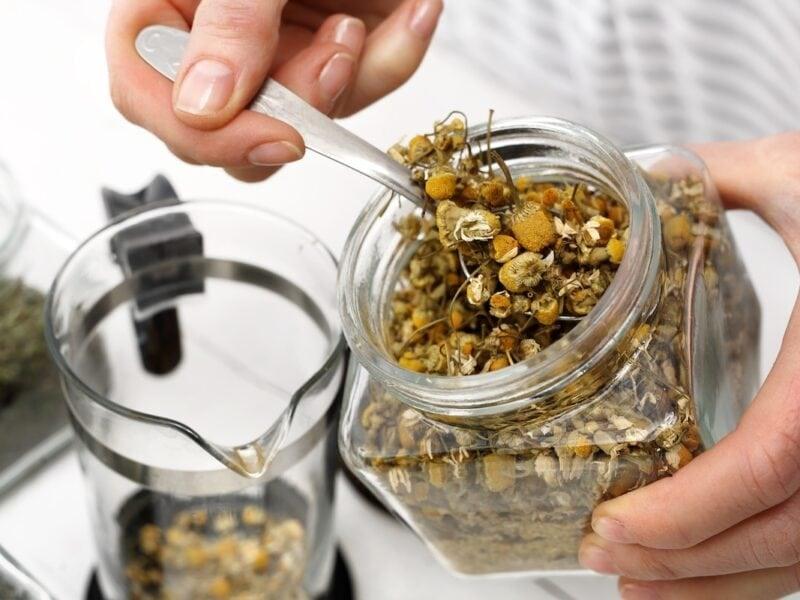 dried tea to make chamomile tea