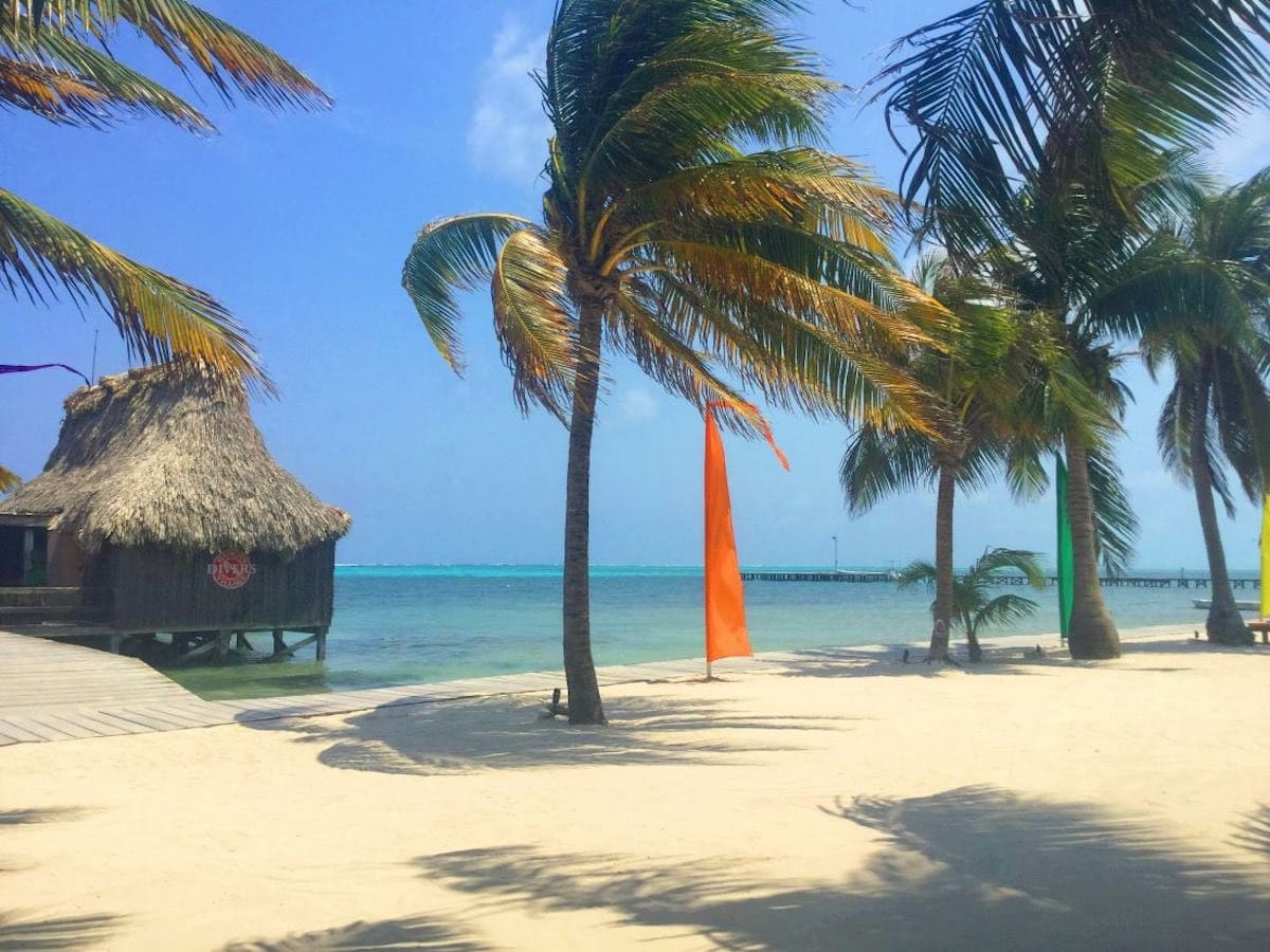 View of beach with palm trees in San Pedro Belize.