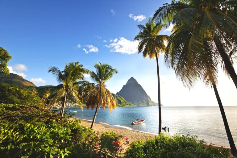View of Soufriere seafront with palm trees in St. Lucia Credit Saint Lucia Tourism Authority